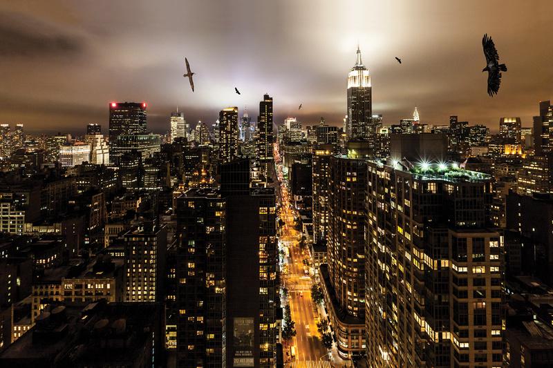 Wandering over Manhattan